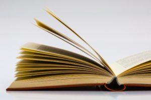 Ne lis surtout pas