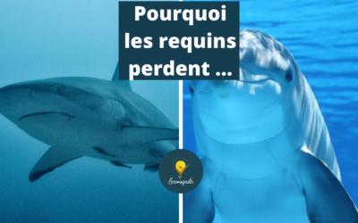 Pourquoi les requins de la vente perdent face aux dauphins